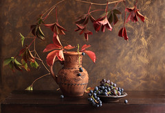 Grapes From The Autumn Garden photo by panga_ua