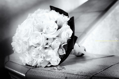 roses&rings - EXPLORED photo by andriyR4