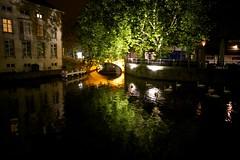Night Swans (Explored) photo by mjw...