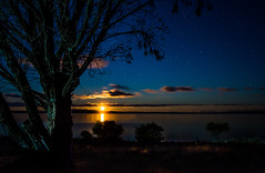 Moon Rising, Port Lincoln South Australia photo by Jacqui Barker Photography