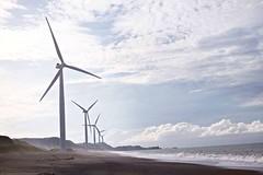 Chasing Windmills photo by chrisitch