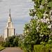 VikaTitova_20130519_084933