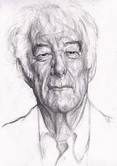Seamus Heaney photo by Sean-Cronin