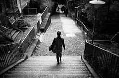 watch your step photo by gato-gato-gato