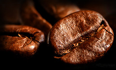 Coffee Beans. photo by Yvette-