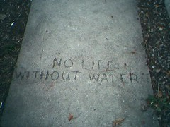 Photo of city words: No life without water