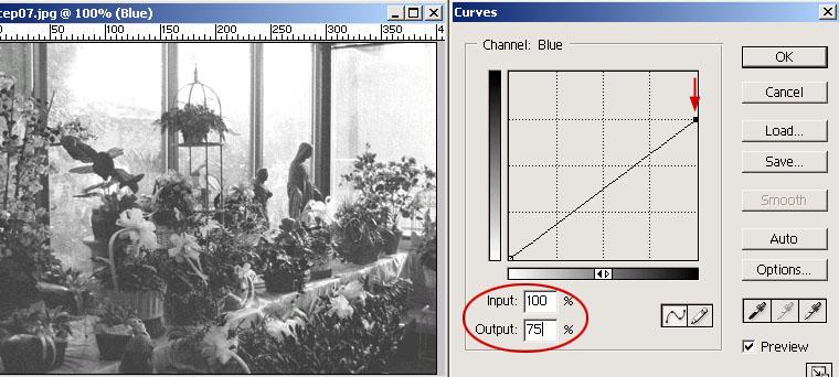 [後製] Photoshop曲線-基礎篇