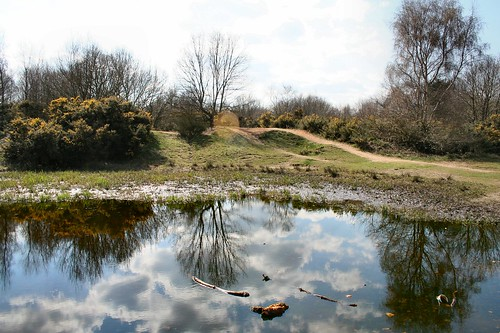 The Vinegar Pond, Mousehold Heath