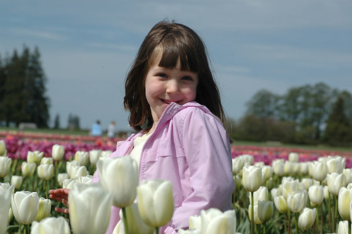 Katie & the Tulips