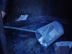 Pjöni und der Mülleimer 05
