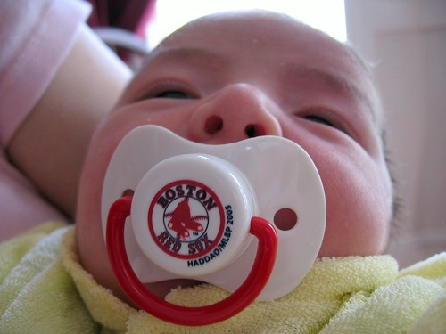The newest Red Sox fan