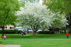 Enjoying Spring Weather