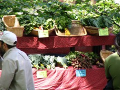 Wednesday Portland Farmers Market