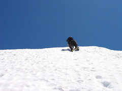 Craig Ascending Snow Wall Above Gully On Baring Mtn