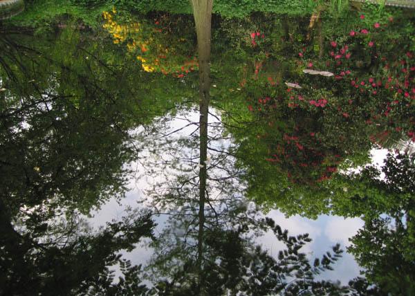 Descubriendo Joyas: Holland Park