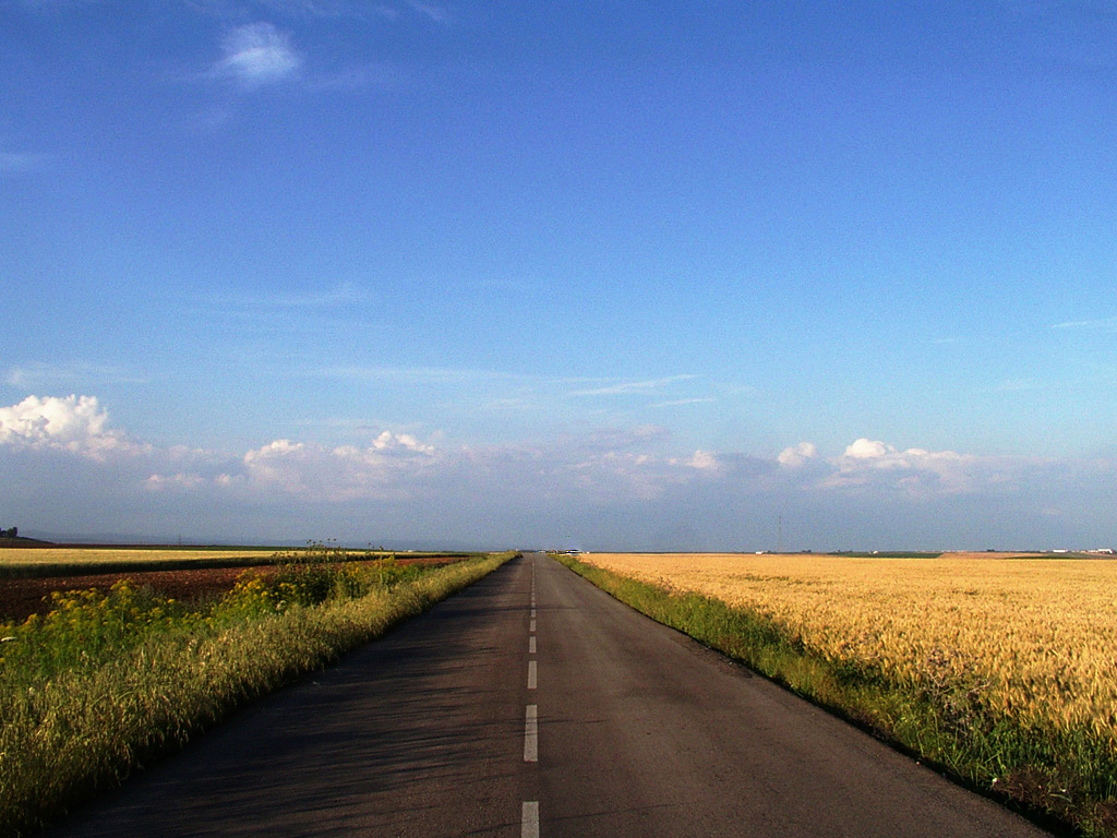 Aprendiendo de la Vida: Carretera hacia el cielo