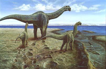 camarasaur