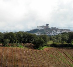 Estremoz over the vines