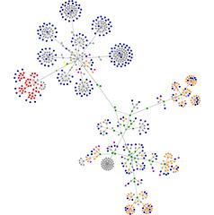 Tecnoetica in versione grafo
