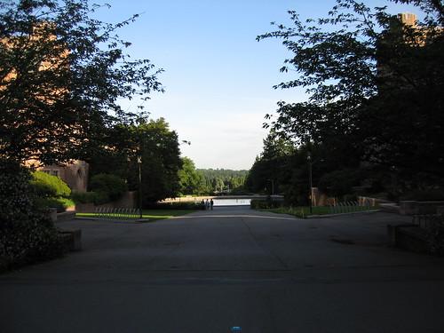 UWash landscape
