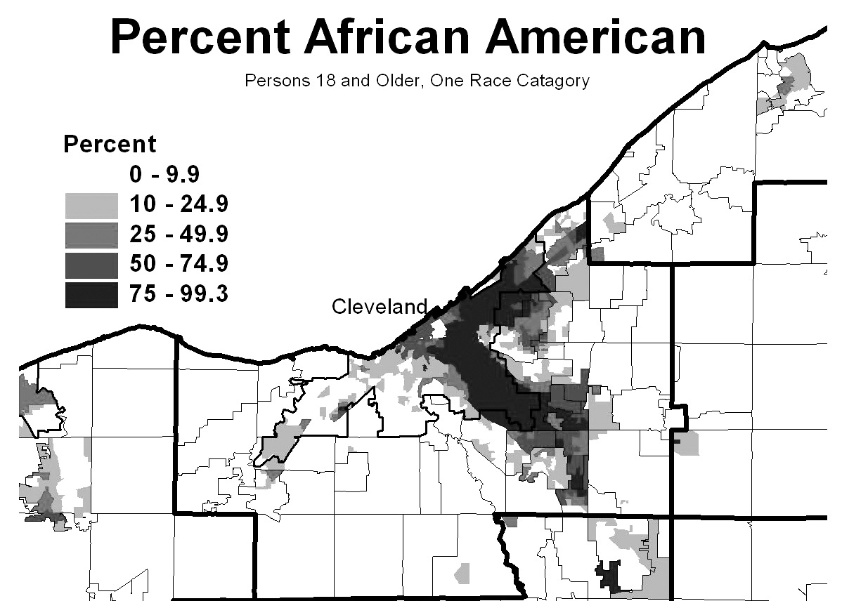 Percentage of African American Voters