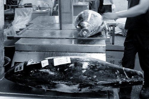 Tsukiji Uoichiba 4