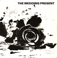 wedding present | once more