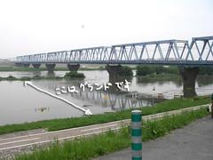 江戸川大増水