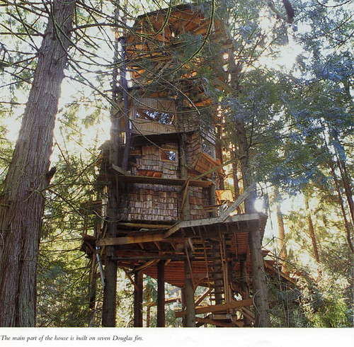 The Scurlock Treehouse—Built by a Bankrobber in Olympia, WA photo by rkeys23_2