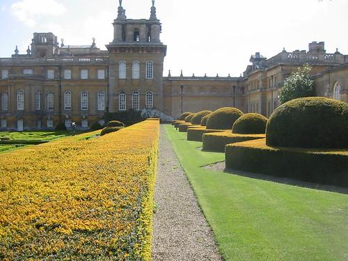 Palatial Hedge
