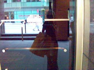 shopper, reflected
