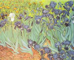 08 Lirios Van Gogh