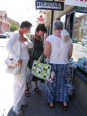The fabric shopping ladies