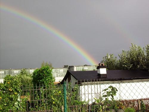 Regenbogen (03)