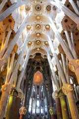 La Sagrada Familia - Organic Architecture photo by vglima1975