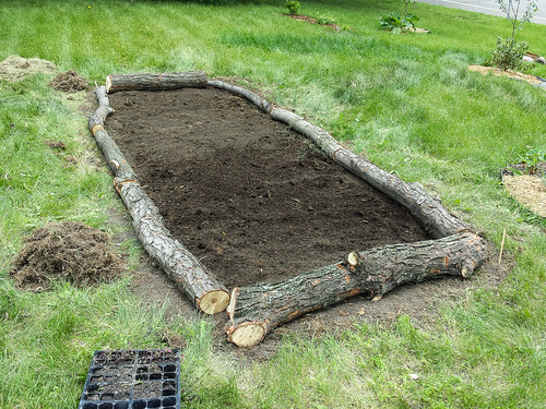Digging and Planting a New Garden Bed