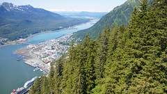 View from Mount Roberts Tramway