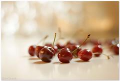 He who likes cherries soon learns to climb. photo by aviana2
