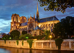 Cathédrale Notre Dame de Paris photo by Craig Stevens <castevens12>