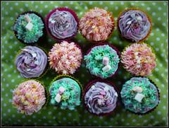 Cupcakes photo by Bibelin