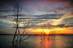 Silent Lake Puchong photo by naza.carraro