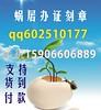 7096066345_ddd66f933d_t
