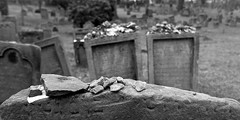 Jewish cemetery #3 photo by wian1900