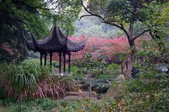 Pagoda in the Park- Explore 12/7 #405-Getty photo by JebbiePix