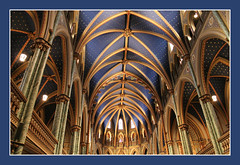 Notre Dame Cathedral Basilica photo by bigbrowneyez