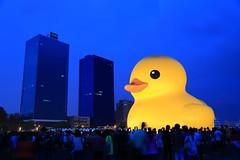 黃色小鴨在高雄 Rubberduck,Kaohsiung photo by Abel_Lai@tw