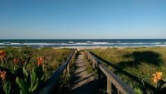 Photo captured in Ormond Beach, Florida with my HTC One M8 Florida Beach Htconem8 Being A Beach Bum photo by Daniel Piraino
