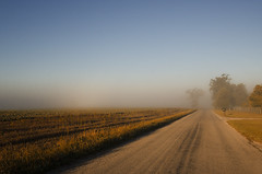 Foggy Country Road photo by mizzginnn
