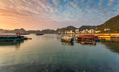 Cat Ba Harbour - Vietnam photo by Tam Church