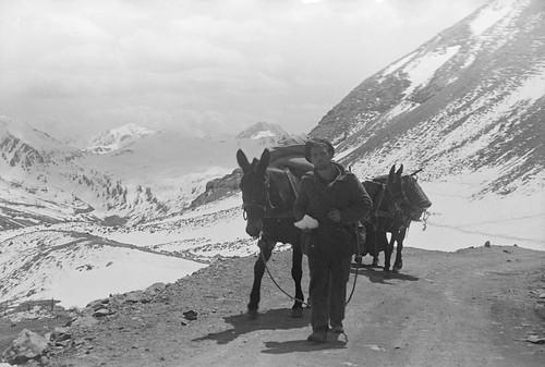 1945 - 1 soldat de la DFL pénètre en Italie par le Col de la Lombarde - ECPA